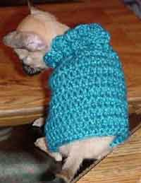 Over 100 Free Pets Crochet Patterns At Allcraftsnet Free Crafts
