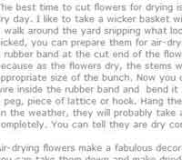 Learn to Dry Flowers