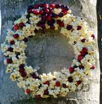 Popcorn Cranberry Wreath for the Birds
