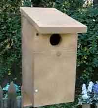 VIDEO How To Build A Bird House