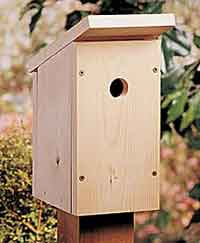 birdhouse plans beginners
