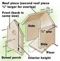 Bird House Plan